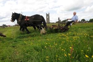 Trim Haymaking Festival - County Meath Ireland