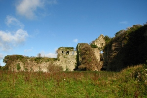 Clonmore_castle_Carlow 300 x 200 Pic by Liam Murphy